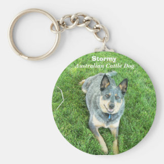 Stormy Basic Round Button Key Ring