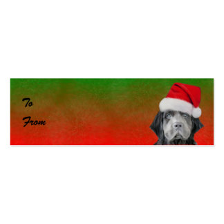 Stormy Christmas gift Tags Pack Of Skinny Business Cards