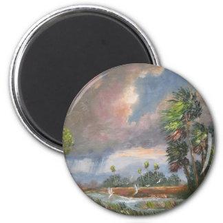 Stormy Florida Backwoods 6 Cm Round Magnet