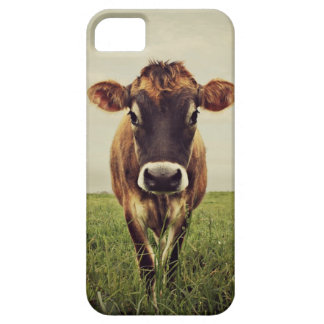 Stormy iPhone 5 Cover