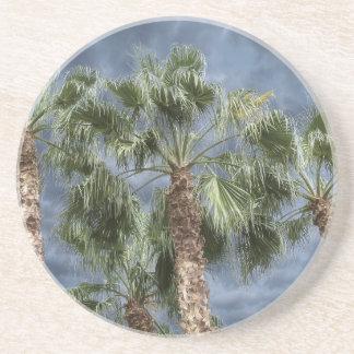 Stormy Sky Palm Trees Drink Coaster