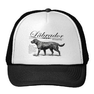 Storybook Style Vintage Labrador Cap