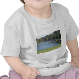 Stourhead Gardens Shirts