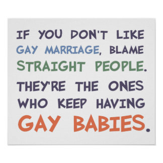 Straight People Are Having Gay Babies Poster