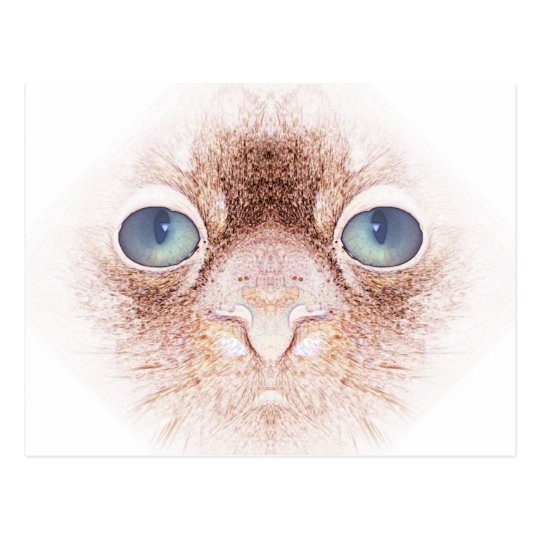 Strangealienpetcat Postcard