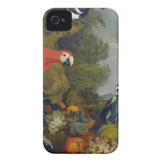 STRANOVER Tobias macaws birds animals fruit nature iPhone 4 Cover