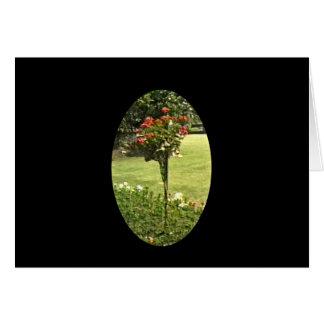 Stratford-upon-Avon England Garden Roses jGibney Greeting Card