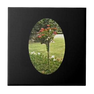 Stratford-upon-Avon England Garden Roses jGibney Small Square Tile
