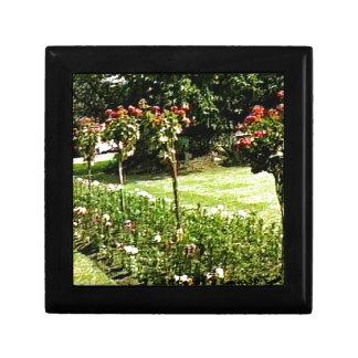 Stratford-upon-Avon Garden Rose snap-29602 jGibney Jewelry Box