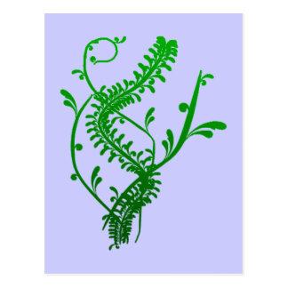 Strauch shrub bush postkarte