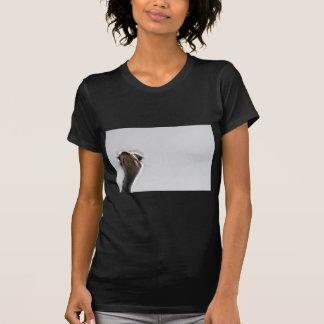 strauss-101 tshirt