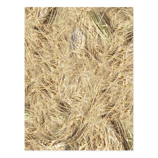 Straw Background Postcard
