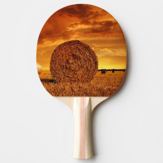 Straw bales on farmland with red cloudy sky ping pong paddle