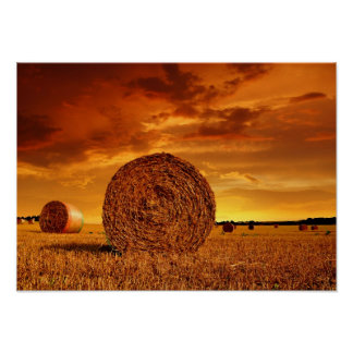 Straw bales on farmland with red cloudy sky poster