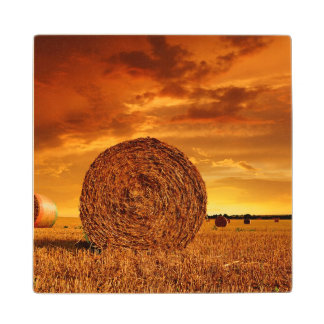 Straw bales on farmland with red cloudy sky wood coaster
