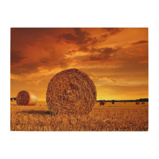Straw bales on farmland with red cloudy sky wood wall art