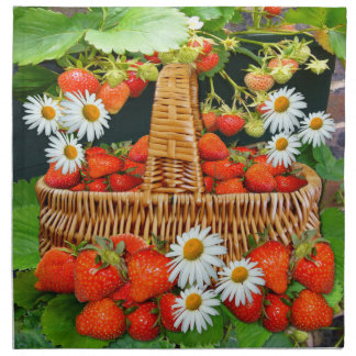 Strawberries and Daisies ~ Napkins