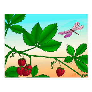Strawberries and Dragonfly print Postcard