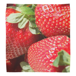 Strawberries Bandannas