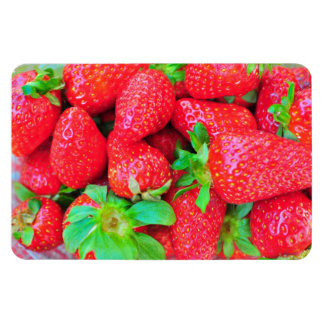 Strawberries Rectangular Photo Magnet