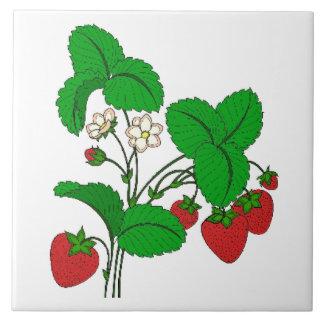 Strawberries for Breakfast Tile