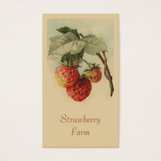 Strawberries fruit sales business card