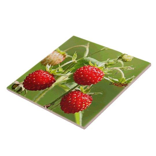 Strawberries Nature Fine Art Fashion Large Square Tile