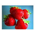 Strawberries Photo Postcards