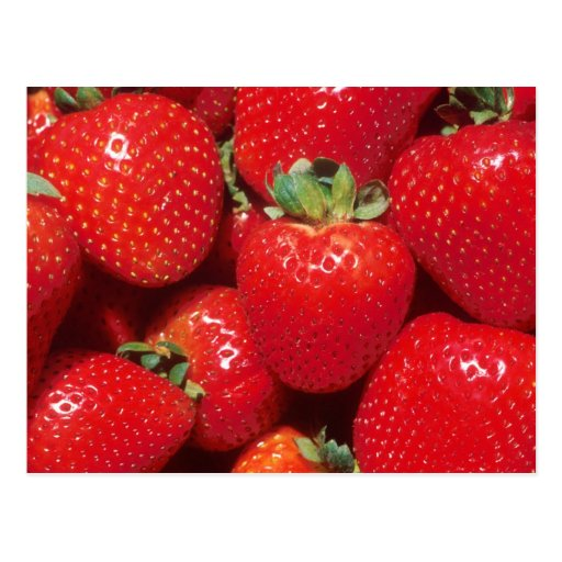 Strawberries Post Card