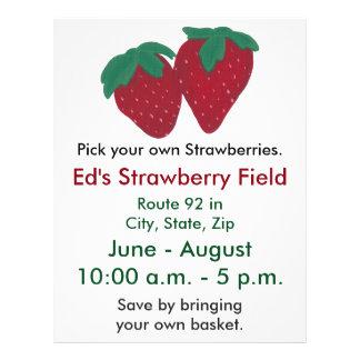 Strawberries Strawberry Farm Flyers