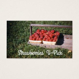 Strawberries, U-Pick Strawberry Vintage Create Business Card