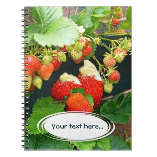 Strawberry Basket ~ Your Text  Notebook
