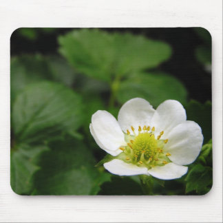 Strawberry Blossom Mousepad
