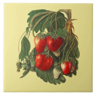 Strawberry ~ Botanical Tile ~ Kitchen ~ Any Color