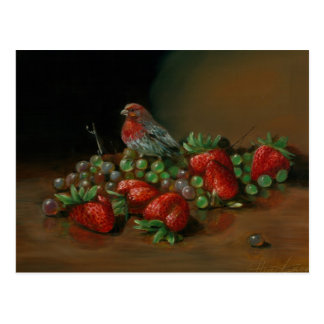 Strawberry finch bird and fruit Strawberries Postcard