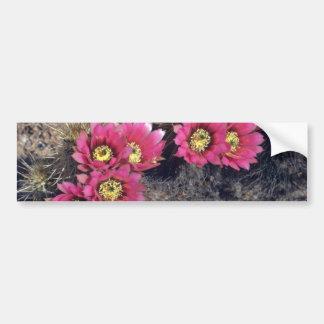 Strawberry Hedgehog Blooming flowers Bumper Sticker