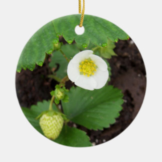 Strawberry Plant Ornament
