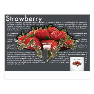 Strawberry Postcard Cartão Postal