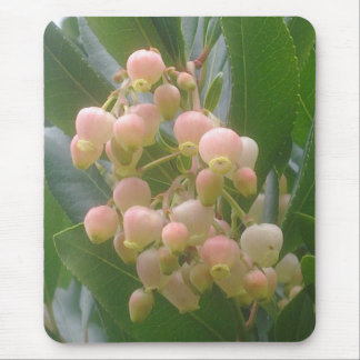 Strawberry Tree Blossom Mousepad