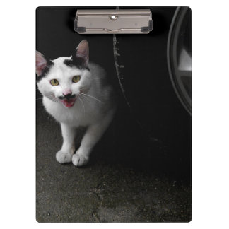Stray Cat with Mustache Clipboard