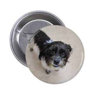 Stray Dog 6 Cm Round Badge