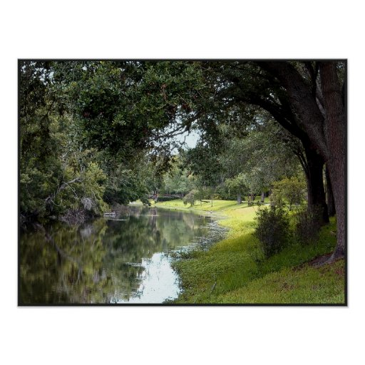 Stream at Sawgrass Park Poster