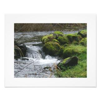 Stream Creek Waterfall Oregon Scenic Photography Photo Art