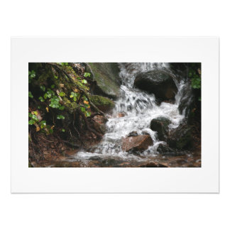 Stream Creek Waterfall Oregon Scenic Photography Photo Print