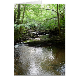 """Stream in Northumberland Woods"" (2) Greeting Card"