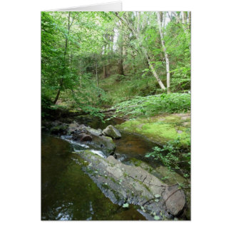 """""""Stream in Northumberland Woods"""" (3) Greeting Card"""