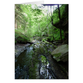 """Stream in Northumberland Woods"" (5) Greeting Card"