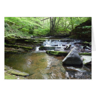 """""""Stream in Northumberland Woods"""" Greeting Card"""