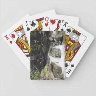 Stream in the Rocky Mountains playing cards