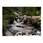Stream in Wild Basin Postcard